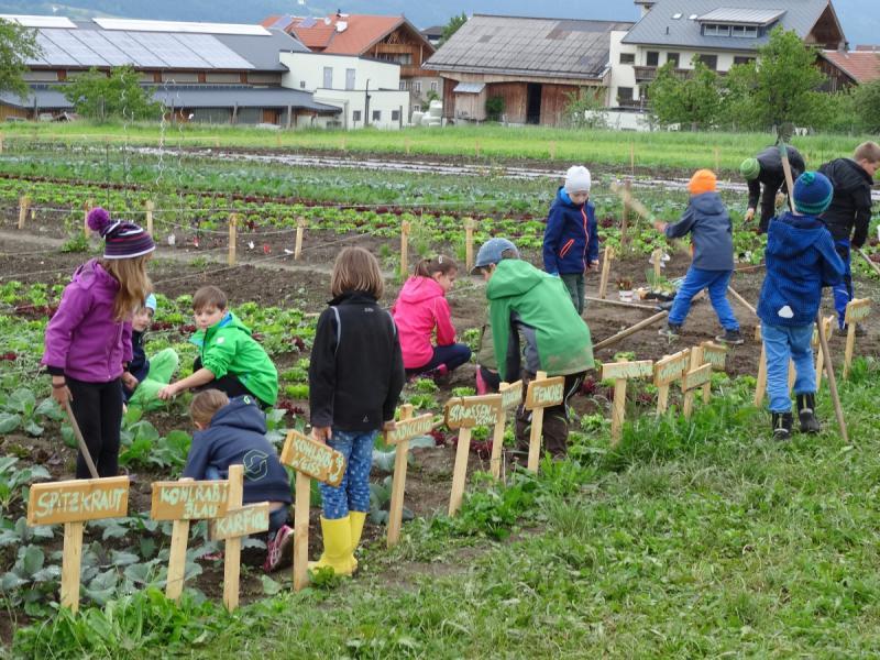 Schulkinder Tiroler Gemeinschaftsgarten Aldrans